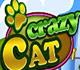 crazy-cat-icon